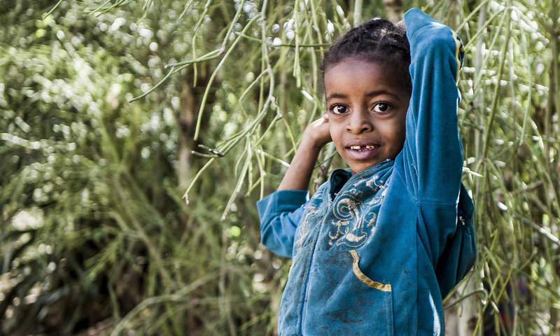 A child in Ethiopia smiles while standing in a forest of green.