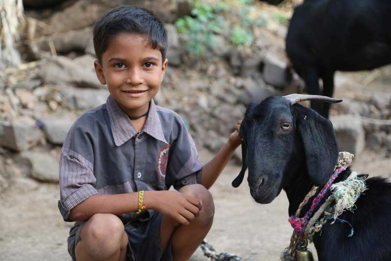 A small boy in India crouches beside a black goat, smiling while he strokes the goat's head. The goat looks toward us, wearing a pink rope collar and a bell.